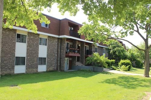 1085 Knoll Unit 307, Hoffman Estates, IL 60194