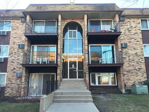 720 Hill Unit 304, Hoffman Estates, IL 60192