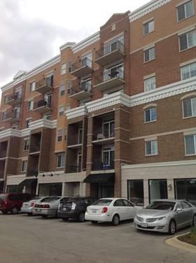 238 E Irving Park Unit 305, Wood Dale, IL 60191