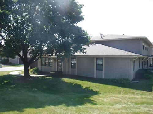 5725 Dutch Mill Unit C, Hanover Park, IL 60133