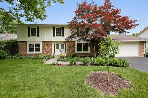 1410 Golden Bell, Downers Grove, IL 60515