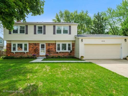 930 Checker, Buffalo Grove, IL 60089
