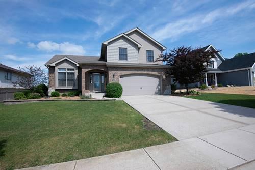 938 Meadowbrook, Elwood, IL 60421