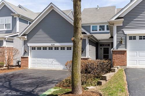 329 Hickory, South Elgin, IL 60177