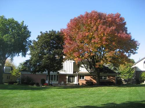 8143 Kathryn, Burr Ridge, IL 60527