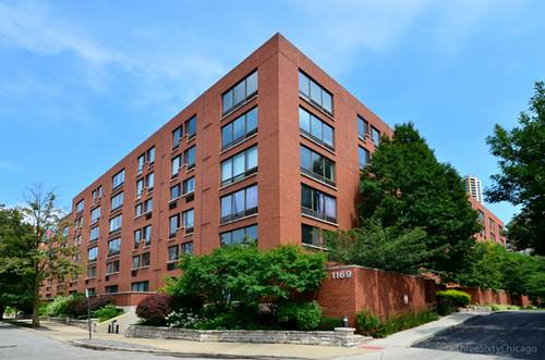 1169 S Plymouth Unit 201, Chicago, IL 60605 South Loop