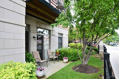 757 W 14th Unit 1B, Chicago, IL 60607
