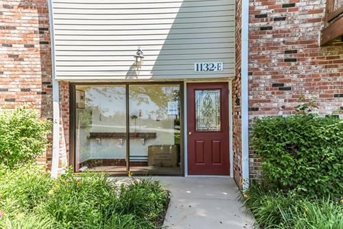 1132 Hinswood Unit 205, Darien, IL 60561
