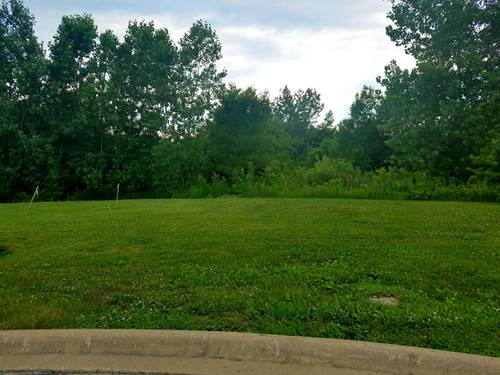 13242 Lake Mary, Plainfield, IL 60585