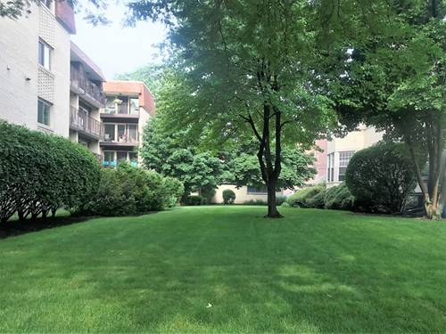 329 Home, Oak Park, IL 60302