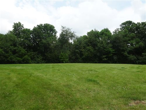 Lot 19 Colony, Yorkville, IL 60560