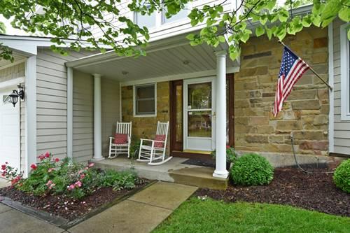 230 Osage, Buffalo Grove, IL 60089