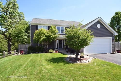 312 W Wildspring, Round Lake, IL 60073