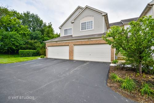 257 Nicole Unit B, South Elgin, IL 60177