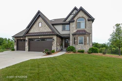 8732 Cullen, Frankfort, IL 60423