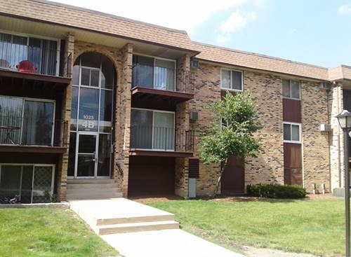 1025 Higgins Quarters Unit 312, Hoffman Estates, IL 60169