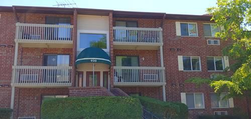 920 N Lakeside Unit 2A, Vernon Hills, IL 60061