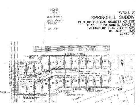 23 Springhill, Coal City, IL 60416