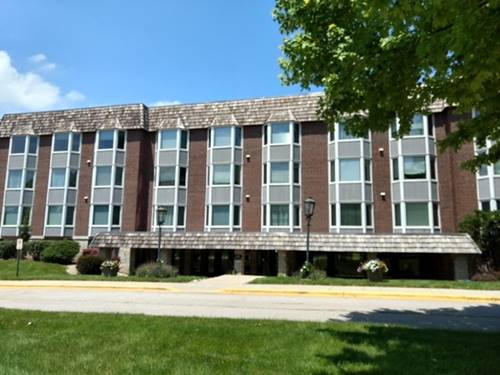 200 Thames Unit 2L, Park Ridge, IL 60068