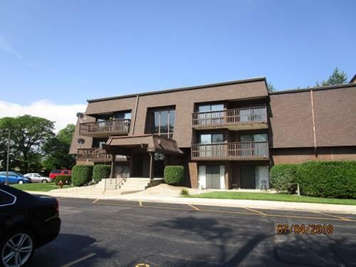 1616 Richmond Unit 304, Joliet, IL 60435