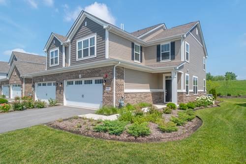 16132 W Coneflower, Lockport, IL 60441