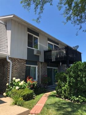 942 E Old Willow Unit 204, Prospect Heights, IL 60070