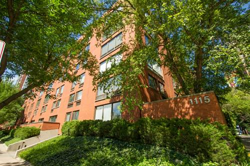 1115 S Plymouth Unit 114, Chicago, IL 60605 South Loop