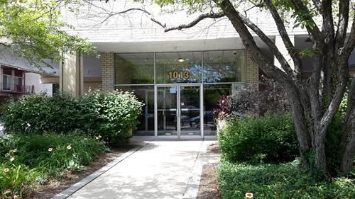 1013 Des Plaines Unit 407, Forest Park, IL 60130