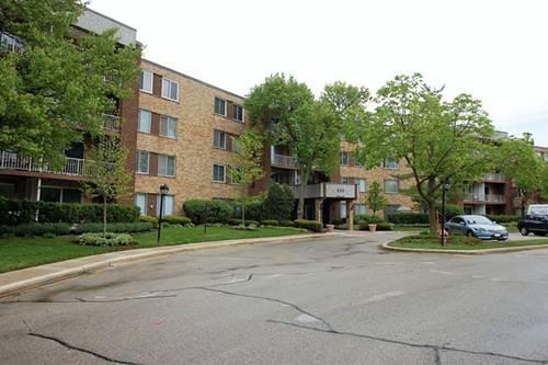 245 S Park Unit 211, Palatine, IL 60074