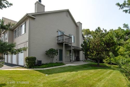 593 Windsor Unit 1D, Fox Lake, IL 60020