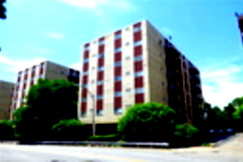 1021 Des Plaines Unit C308, Forest Park, IL 60130