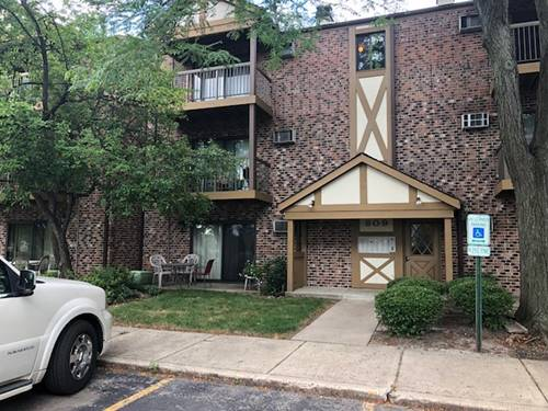 809 S Dwyer Unit F, Arlington Heights, IL 60005