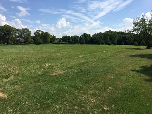 Lot 4 S Ford, Channahon, IL 60410