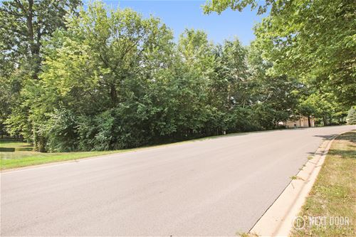 Lot 27 Mitchell, Plano, IL 60545