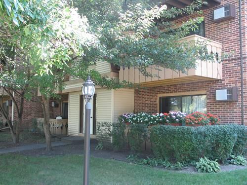 20 Parkside Unit 12, Vernon Hills, IL 60061