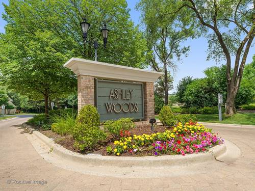 11467 Ashley Woods, Westchester, IL 60154