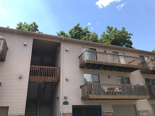 320 Woodridge Unit C, South Elgin, IL 60177
