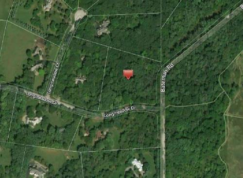 Lot 1 Longmeadow, Barrington Hills, IL 60010
