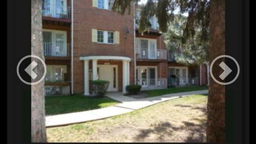 607 Quincy Bridge Unit 201, Glenview, IL 60025