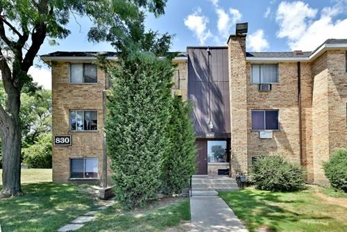 830 W College, Addison, IL 60101