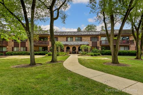 8010 Woodglen Unit 203, Downers Grove, IL 60516