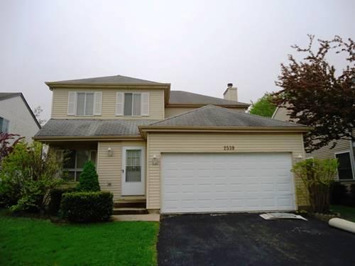 2539 Brunswick, Woodridge, IL 60517