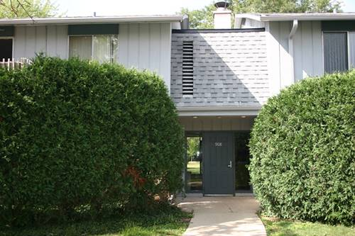 908 E Old Willow Unit 204, Prospect Heights, IL 60070