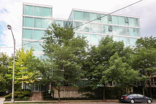 3115 S Michigan Unit 707, Chicago, IL 60616