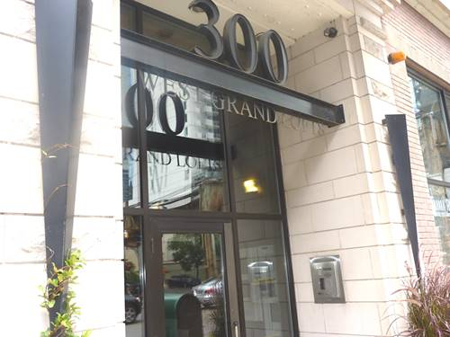 300 W Grand Unit 203, Chicago, IL 60654 River North