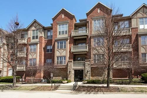 1739 Tudor Unit 207, Northbrook, IL 60062
