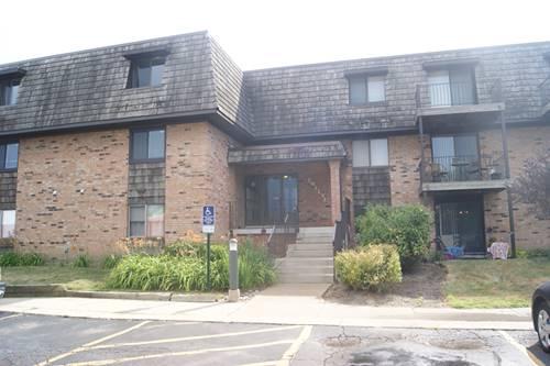12 Oak Creek Unit 3213, Buffalo Grove, IL 60089