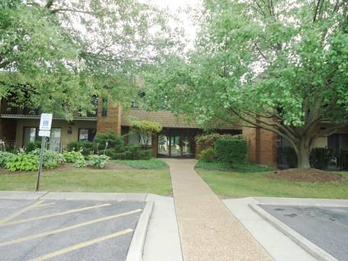 110 Old Oak Unit 234, Buffalo Grove, IL 60089