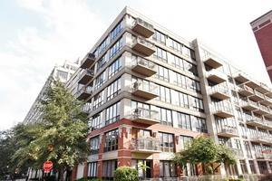 1000 N Kingsbury Unit 201N, Chicago, IL 60610 Near North