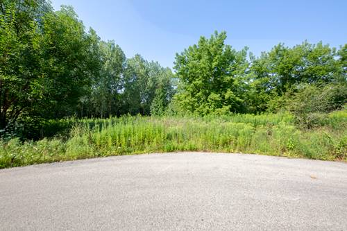 Lot 2 Balsam, Long Grove, IL 60047